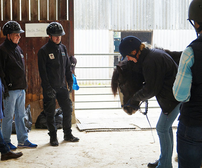 Practical-handling-provided-valuable-insight-into-reading-horse-body-language